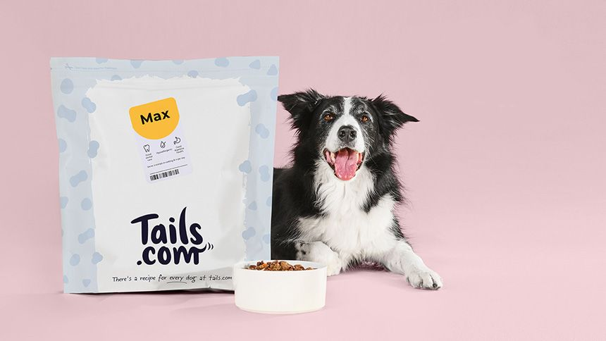 Tails.com - 1 month FREE dog food