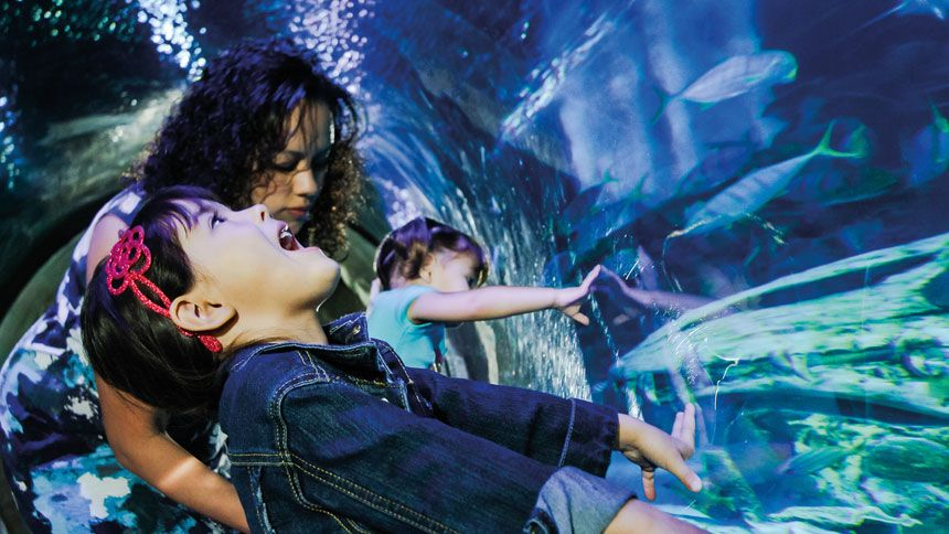SEA LIFE London - Huge savings for Carers